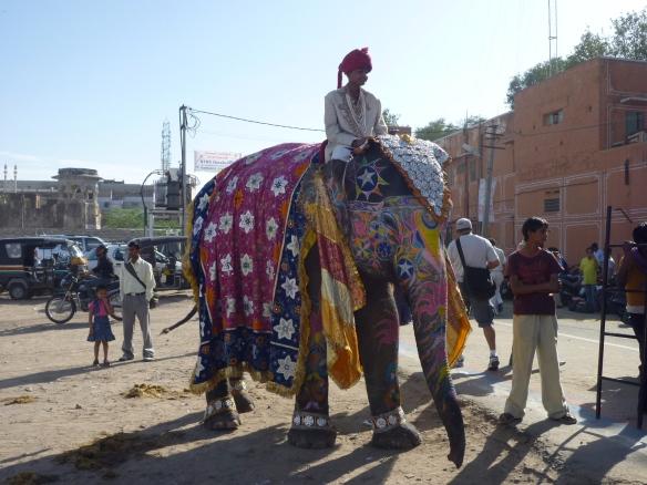 Elephant festival!