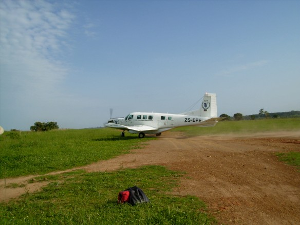 The plane...