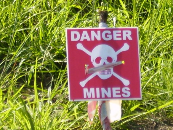 Entering the minefield