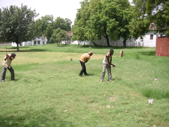 Cutting grass with a scythe, old-school style.