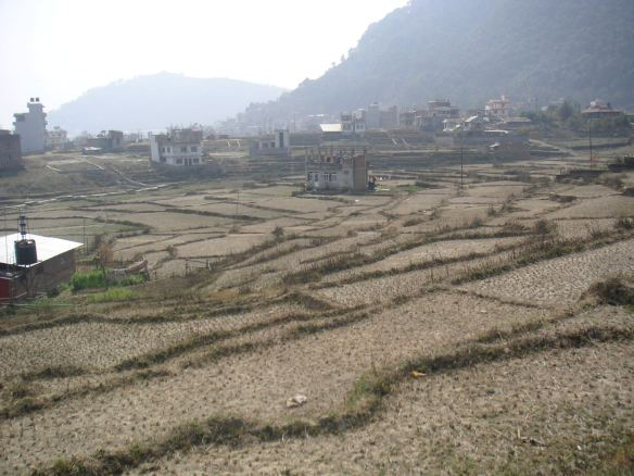 The rice paddies on the outskirts of Kathmandu - as you can see, it's been a very dry winter!